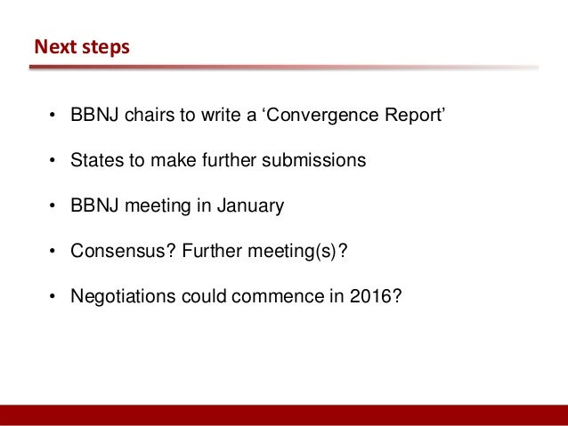 Some concluding thoughts  • A feeling of urgency cf. a long and complex governance process  • A unique opportunity?  • Fra...