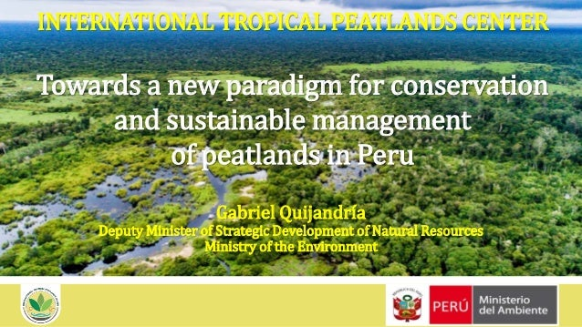 INTERNATIONAL TROPICAL PEATLANDS CENTER Towards a new paradigm for conservation and sustainable management of peatlands in...