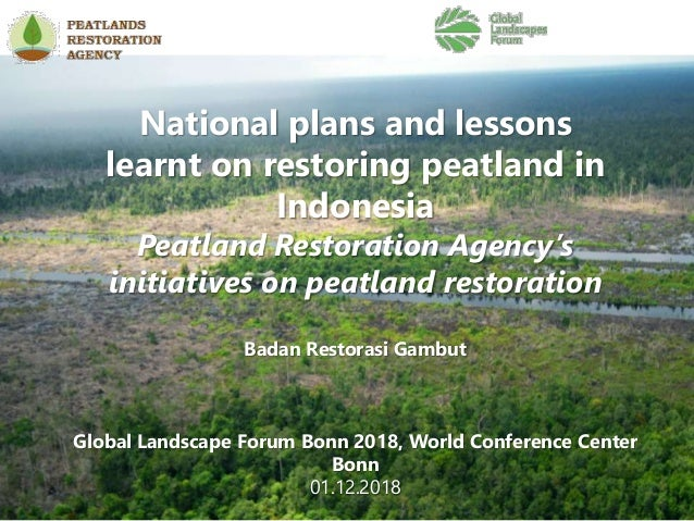 National plans and lessons learnt on restoring peatland in Indonesia Peatland Restoration Agency's initiatives on peatland...