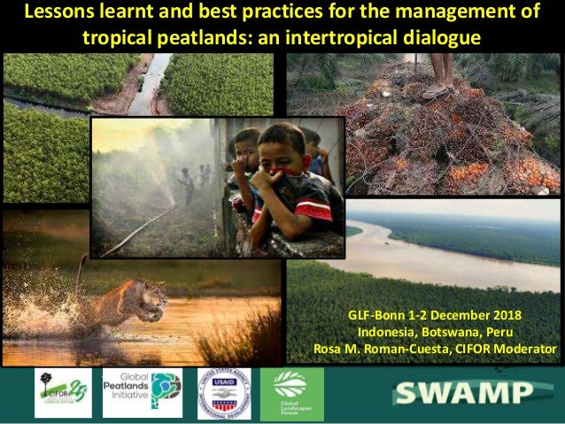 Lessons learnt and best practices for the management of tropical peatlands: an intertropical dialogue GLF-Bonn 1-2 Decembe...