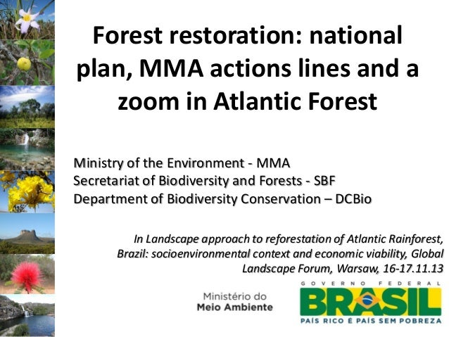 Forest restoration: national plan, MMA actions lines and a zoom in Atlantic Forest Ministry of the Environment - MMA Secre...
