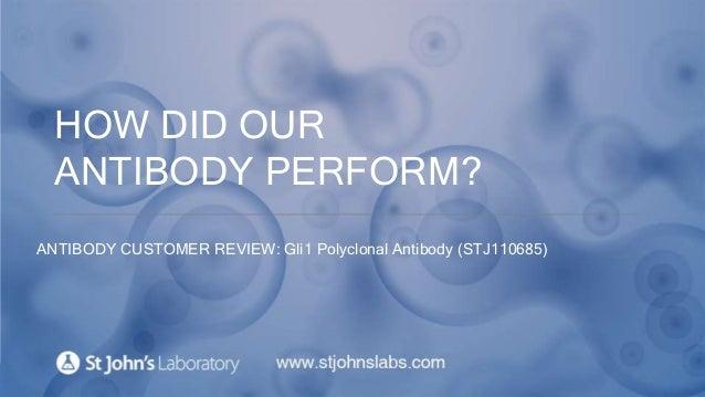 HOW DID OUR ANTIBODY PERFORM? ANTIBODY CUSTOMER REVIEW: Gli1 Polyclonal Antibody (STJ110685)