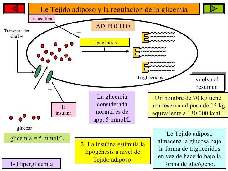 Glicemia martorell