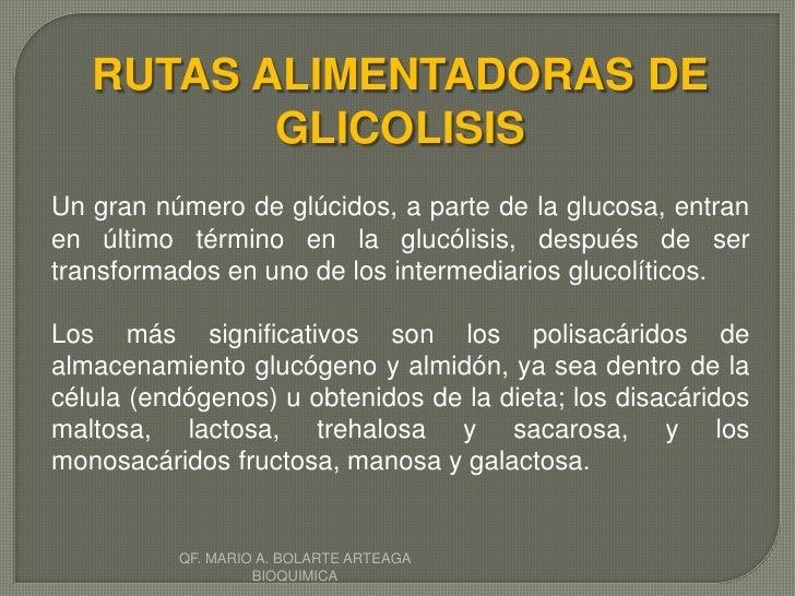 Glicolisis
