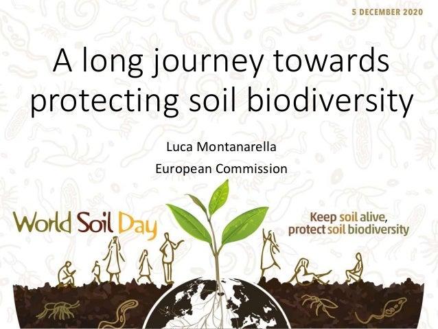 A long journey towards protecting soil biodiversity Luca Montanarella European Commission