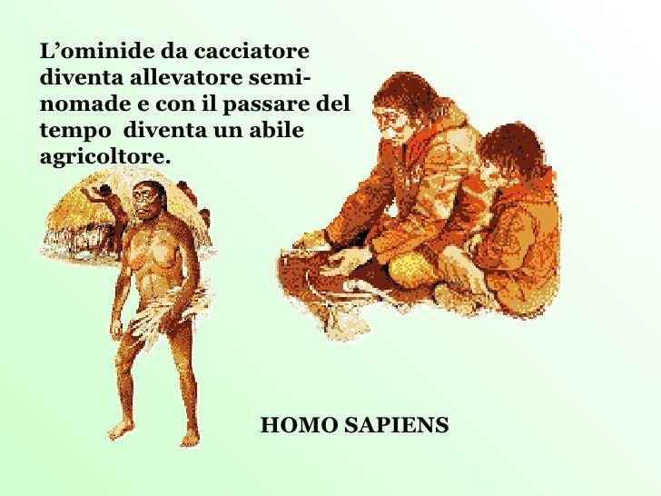 HOMO SAPIENS L'ominide da cacciatore diventa allevatore semi-nomade e con il passare del tempo  diventa un abile agricolto...