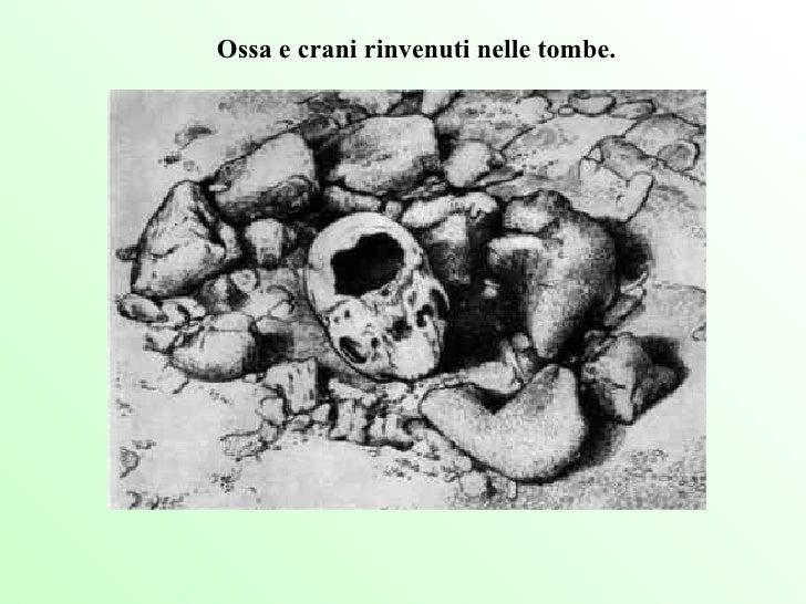 Ossa e crani rinvenuti nelle tombe.