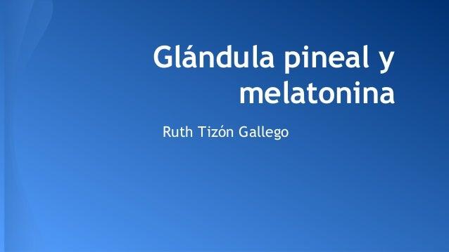 Glándula pineal y melatonina Ruth Tizón Gallego
