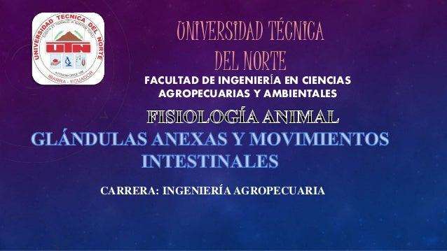 UNIVERSIDAD TÉCNICA  DEL NORTE  FACULTAD DE INGENIERÍA EN CIENCIAS  AGROPECUARIAS Y AMBIENTALES  CARRERA: INGENIERÍA AGROP...
