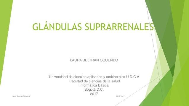 GLÁNDULAS SUPRARRENALES LAURA BELTRAN OQUENDO Universidad de ciencias aplicadas y ambientales U.D.C.A Facultad de ciencias...