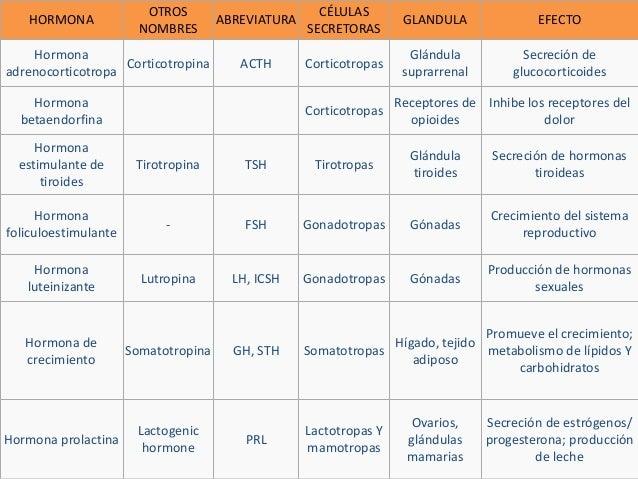 Glándulas suprarrenales, glándula hipofisis