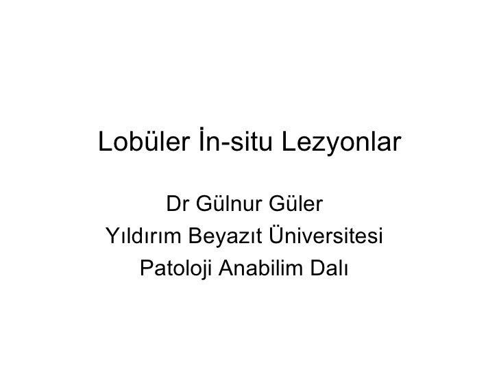 Lobüler İn-situ Lezyonlar       Dr Gülnur GülerYıldırım Beyazıt Üniversitesi    Patoloji Anabilim Dalı