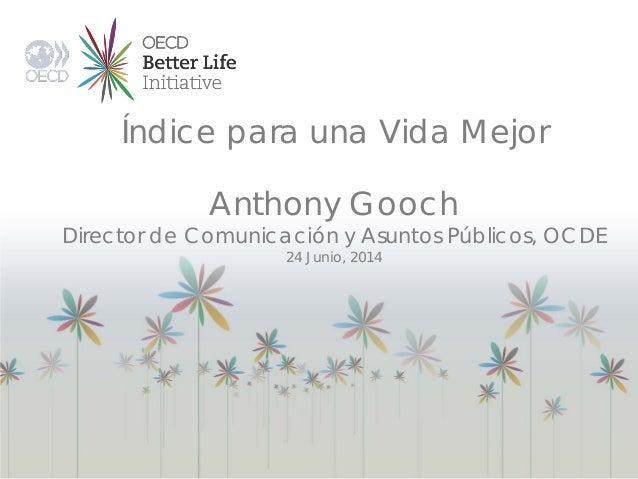 Índice para una Vida Mejor Anthony Gooch Director de Comunicación y Asuntos Públicos, OCDE 24 Junio, 2014