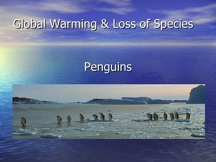 Global Warming & Loss of Species <ul><li>Penguins </li></ul>