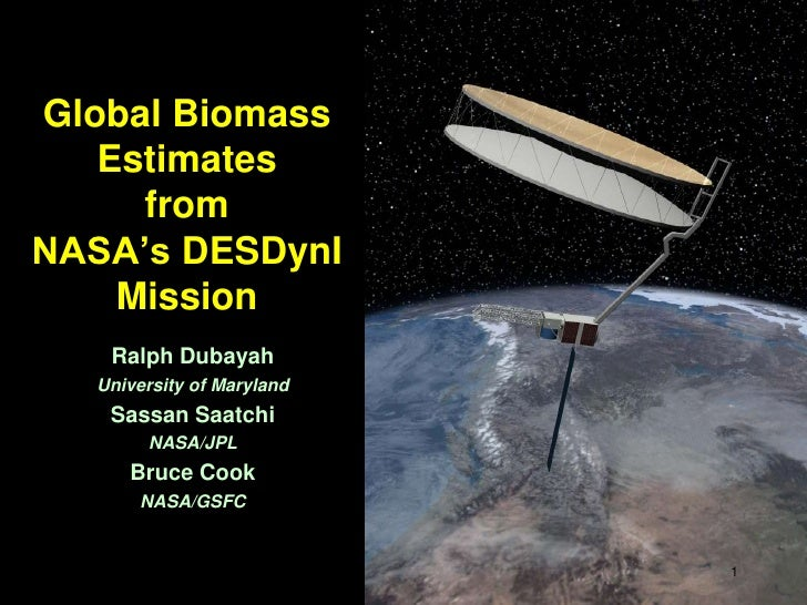 Global Biomass Estimates from NASA's DESDynI Mission <br />Ralph Dubayah<br />University of Maryland<br />Sassan Saatchi<b...