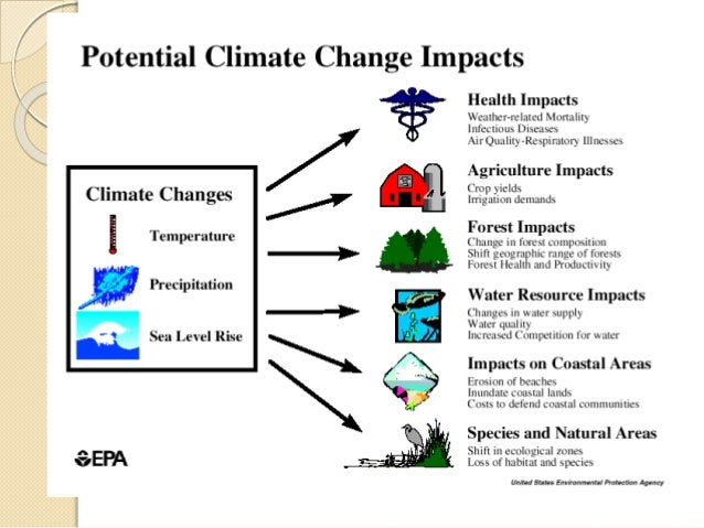 an analysis of the climate change and its effects Putting climate change in the framework of economic analysis, we can  impacts  of climate change have already begun to affect climate patterns (see box 1.