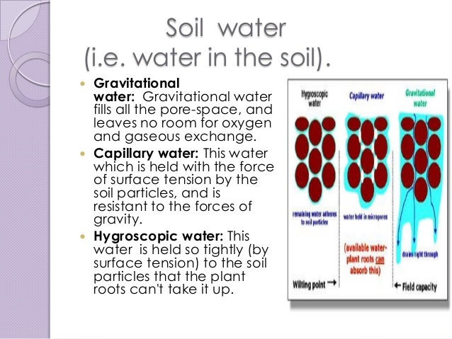 Global contamination of soil for Why the soil forms layers in water