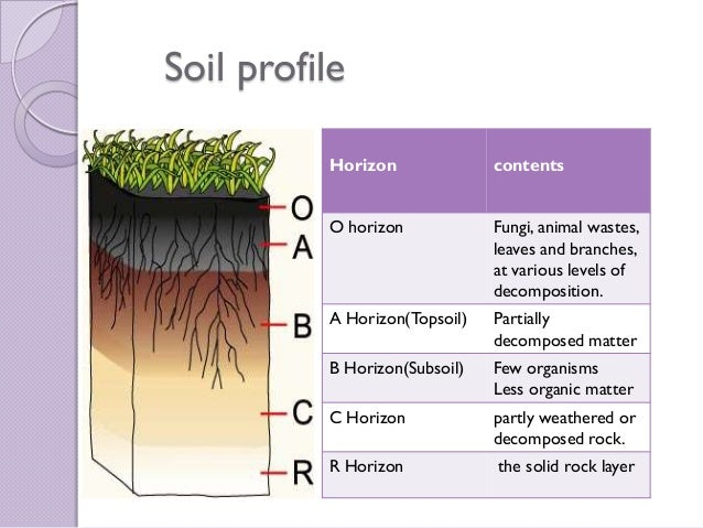 Pics for soil profile horizons information for Soil details