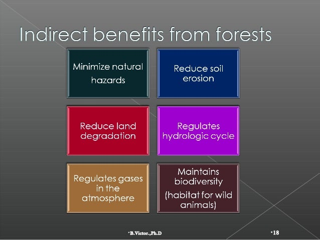 the global depletion of forests What are the main causes of forest depletion social science the making of a global world.