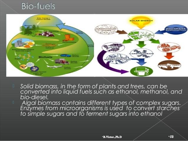 Global depletion and conservation of natural resources