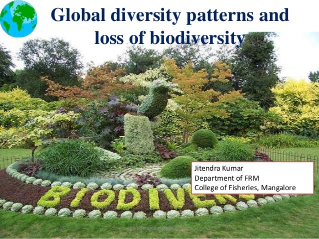 Global diversity patterns and loss of biodiversity  Jitendra Kumar Department of FRM College of Fisheries, Mangalore  jite...