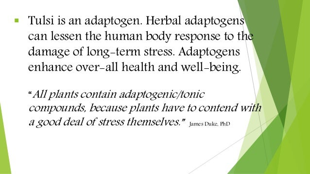  Tulsi is an adaptogen. Herbal adaptogens can lessen the human body response to the damage of long-term stress. Adaptogen...