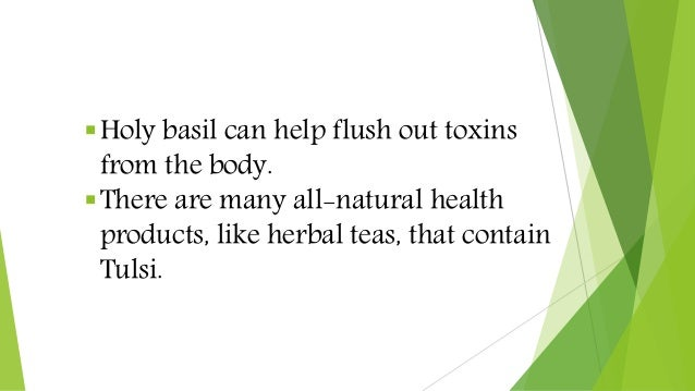Holy basil can help flush out toxins from the body. There are many all-natural health products, like herbal teas, that c...