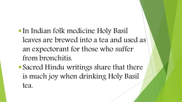 In Indian folk medicine Holy Basil leaves are brewed into a tea and used as an expectorant for those who suffer from bron...