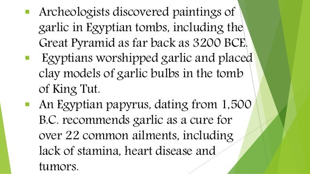  Archeologists discovered paintings of garlic in Egyptian tombs, including the Great Pyramid as far back as 3200 BCE.  E...
