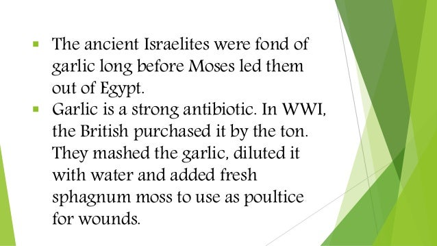 The ancient Israelites were fond of garlic long before Moses led them out of Egypt.  Garlic is a strong antibiotic. In ...