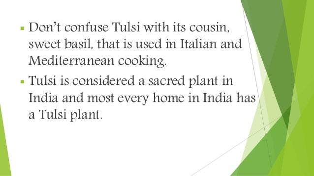  Don't confuse Tulsi with its cousin, sweet basil, that is used in Italian and Mediterranean cooking.  Tulsi is consider...