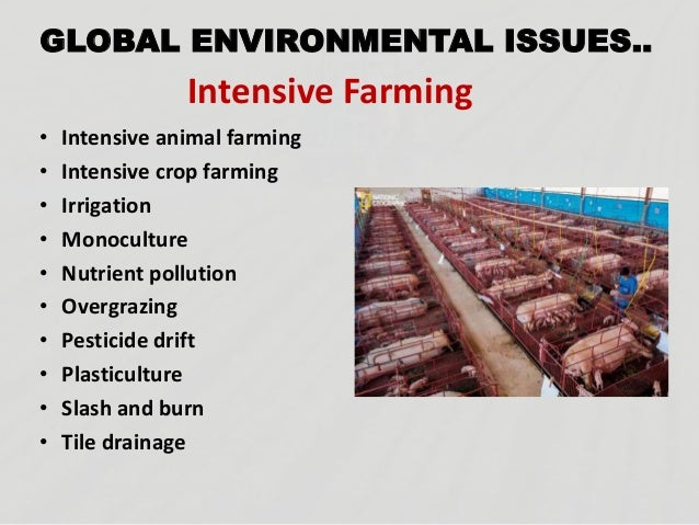 ... 7. GLOBAL ENVIRONMENTAL ISSUES.