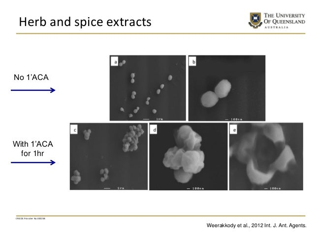 Herb and spice extracts CRICOS Provider No 00025B No 1'ACA With 1'ACA for 1hr Weerakkody et al., 2012 Int. J. Ant. Agents.