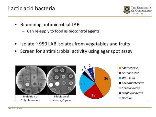 CRICOS Provider No 00025B Lactic acid bacteria • Biomining antimicrobial LAB – Can re-apply to food as biocontrol agents •...