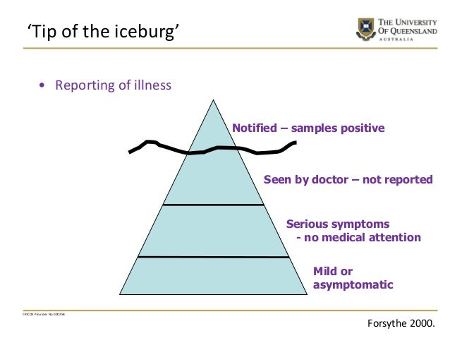 'Tip of the iceburg' CRICOS Provider No 00025B • Reporting of illness Seen by doctor – not reported Notified – samples pos...