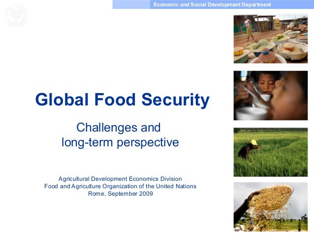Economic and Social Development Department Food and Agriculture Organization of the United Nations Global Food Security Ch...