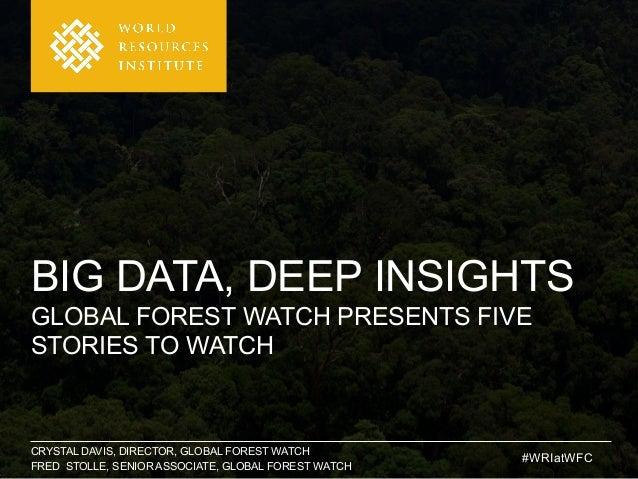CRYSTAL DAVIS, DIRECTOR, GLOBAL FOREST WATCH FRED STOLLE, SENIOR ASSOCIATE, GLOBAL FOREST WATCH BIG DATA, DEEP INSIGHTS GL...