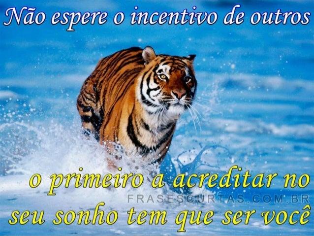 • Constituída por um grupo de investidores Brasileiros • Sede Administrativa em Curitiba – Pr.  • Suporte completo aos fra...