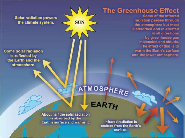 Differences Between Global Warming And Greenhouse Effect