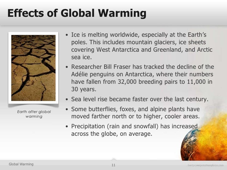 essays on global warming cause and effect