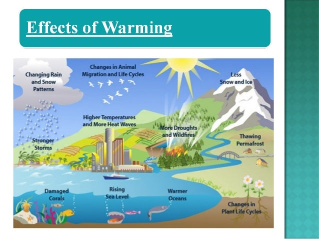 the causes and effects of global warming Buy global warming: causes, effects, and the future on amazoncom ✓ free  shipping on qualified orders.