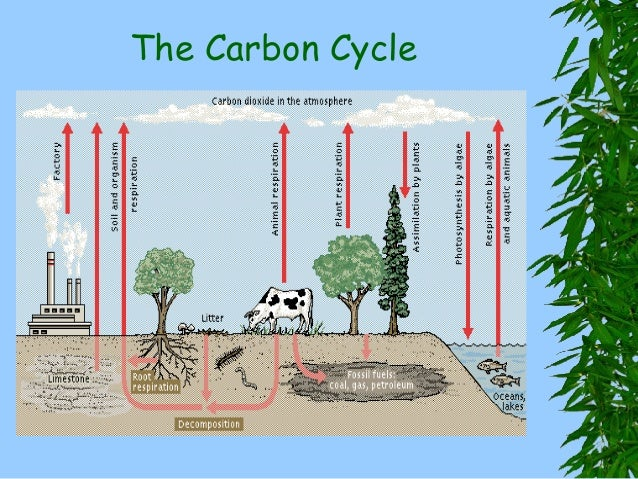 air pollution and global warming Contribute to both local air pollution and global climate change, so it makes sense   warming effect on climate, depending on its properties, and also has a key.