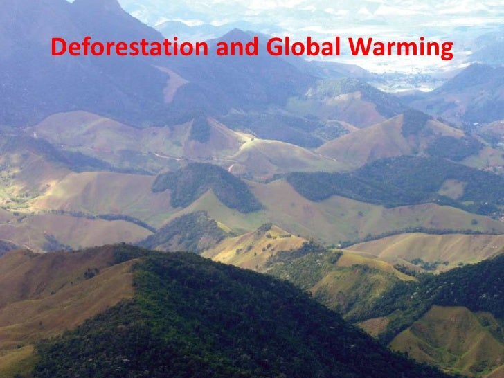 Global Warming Seminar: Acid Rain & Deforestation