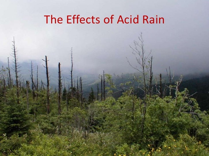 the main characteristics of acid rain Laboratorio betalab  acid rain research paper zipper  acid rain research  peyups love articles essay what are the main characteristics of an analytical essay.