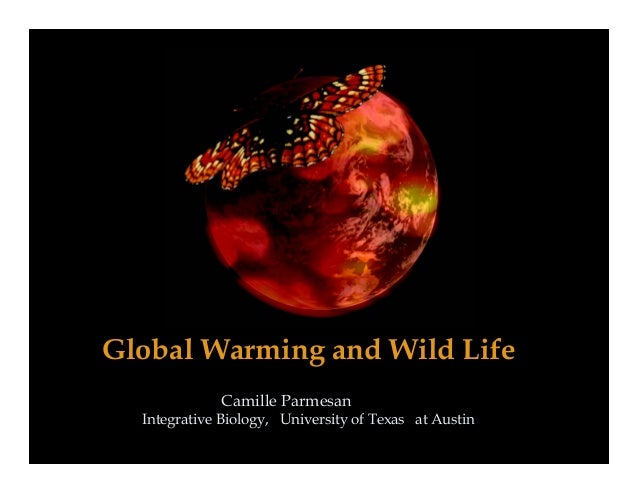 Global Warming and Wild LifeCamille ParmesanIntegrative Biology, University of Texas at Austin