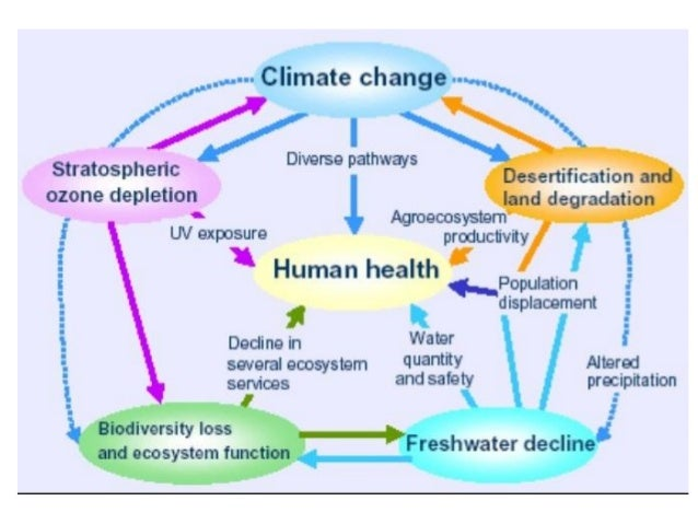 Global warming climate change and stress related disorders 8 effects of climate change ccuart