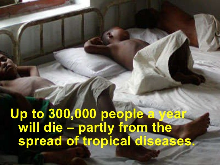 <ul><li>Up to 300,000 people a year will die – partly from the spread of tropical diseases. </li></ul>