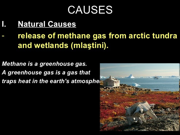 global warming causes and consequences Global warming causes and effects essay 1 (100 words) global warming is a major concern nowadays because of the regular increasing temperature of the whole atmosphere.