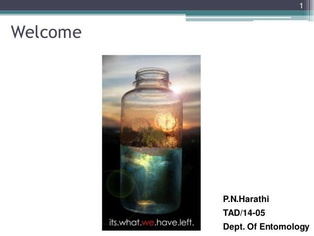 Welcome P.N.Harathi TAD/14-05 Dept. Of Entomology 1
