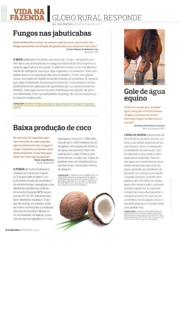 Globo Rural - Carta do Leitor - Jabuticaba